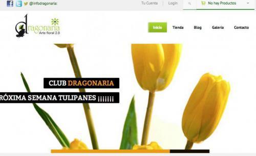 Floristeria Dragonaria