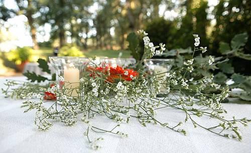 Celebran una unica boda cada dia