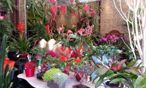floristeria bodas