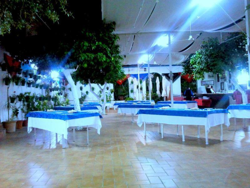 Coctel Nocturno en el Patio Cordobes del Restaurante en Cordoba Taberna Sociedad Plateros de Maria Auxiliadora ideal para grupos y celebraciones o tapear con los amigos nada mejor que una buena tapa en cordobesa