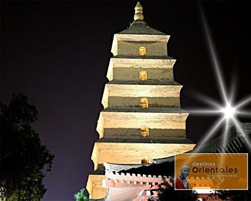 Pagoda oca mayor