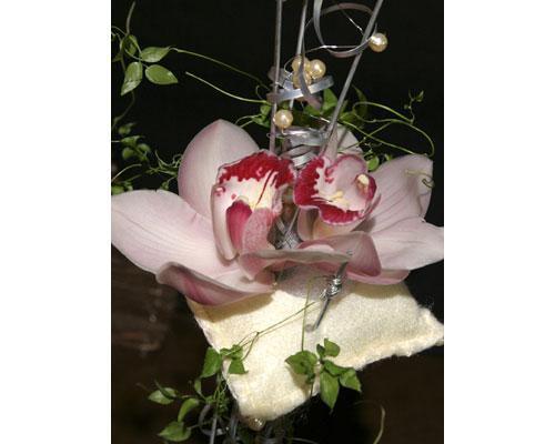 Flores exóticas y muy especiales