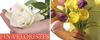 Fina Floristes